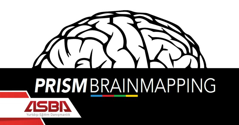 PRISM Brain Mapping